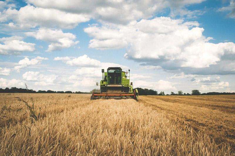 Erneuerbare Energien Schlüssel für erfolgreiche österreichische Landwirtschaft